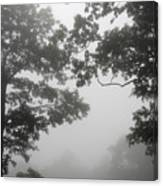 From Inside A Cloud Canvas Print