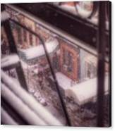 From My Window - Braving The Snow Canvas Print