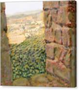 From The Castle Walls Canvas Print