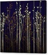 From The Grass We Creep Canvas Print