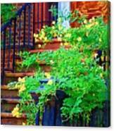 Front Stoop Canvas Print
