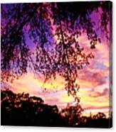 Front Yard Sunset 2 Canvas Print
