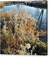 Frost Along Nippersink Creek In Glacial Park At Sunrise Canvas Print