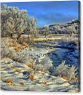 Frost Along The Creek Canvas Print