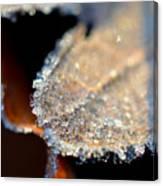 Frost Diamonds Canvas Print