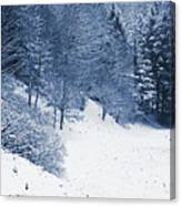 Frost Path Canvas Print