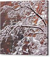 Frosted Branches Canvas Print