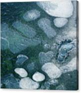 Frosted Bubbles Canvas Print