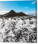 Frosted Over Hinterland Canvas Print