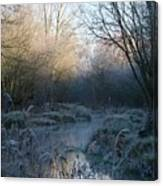 Frosted Riverbank Canvas Print