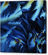 Frosty Blues Canvas Print