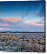 Frosty Fields Canvas Print
