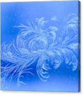 Frosty Flower Canvas Print