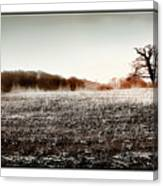 Frosty Landscape Canvas Print