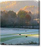 Frosty Morning On The Farm Canvas Print