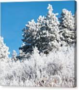 Frosty Mountainside Canvas Print