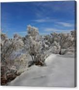 Frosty Shrubs Along The Hudson Canvas Print
