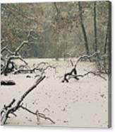 Frozen Fallen Wide Canvas Print