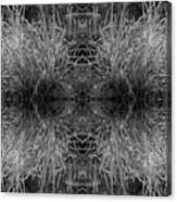 Frozen Grass Abstract In Bw Canvas Print
