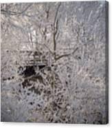 Frozen In Ice Canvas Print