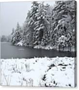 Frozen Lake 2 Canvas Print