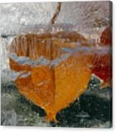 Frozen Pop Cherry Canvas Print