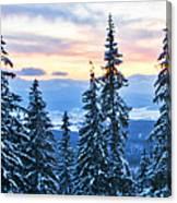 Frozen Reflection 2 Canvas Print