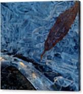 Frozen Refuge.. Canvas Print