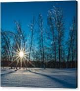 Frozen Trees Under A Winter Sunset Canvas Print