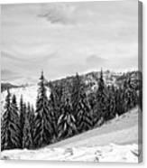 Frozen Valley 4 Bw  Canvas Print