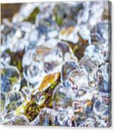 Frozen Water Droplets Canvas Print