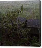 Frozen Web With Light To Dark Background Canvas Print