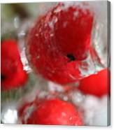 Frozen Winter Berries Canvas Print