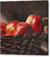 Fruit Basket Canvas Print