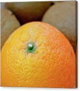Fruit Basket. Orange. Canvas Print