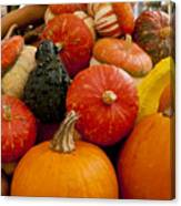 Fruit Of The Harvest Canvas Print