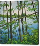 Fruit Ridge Ponds Canvas Print