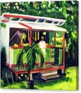 Fruit Stand North Shore Oahu Hawaii #163 Canvas Print