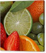 Fruitmix Canvas Print