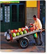 Fruta Limpia Canvas Print