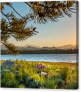 Frye Lake Flowers Canvas Print