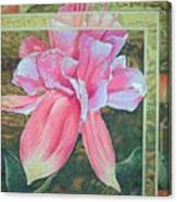 Fucshia Canvas Print