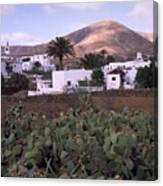 Fuerteventura Iv Canvas Print