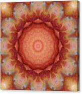 Fuji Apples Kaleidoscope Canvas Print