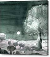 Full Moon Olive Tree  Canvas Print