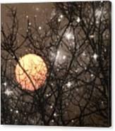 Full Moon Starry Night Canvas Print
