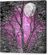 Full Moon Watching Canvas Print