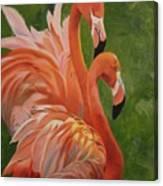Fun Flamingos Canvas Print