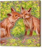 Funny Foxes .2007 Canvas Print