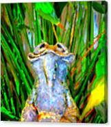 Funny Frog Canvas Print
